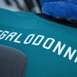 Close up of Megalodonnie's (ancestor of SJ Sharkie) name on his jersey.