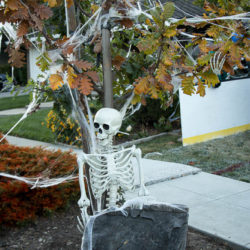 Skeleton fan sitting by the Halloween hockey game.