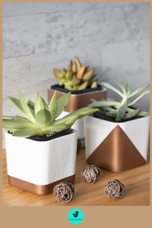 Cute and Simple Succulent Containers made from square glass candleholders.