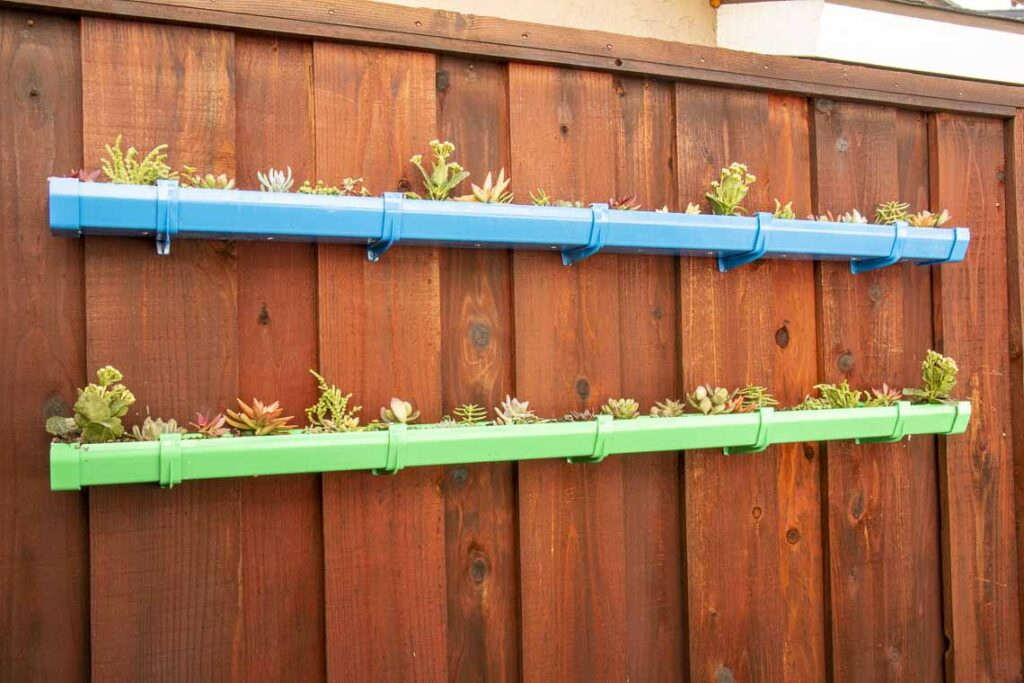 Two level rain gutter garden, painted green and blue, filled with a variety of small succulents mounted on a fence.