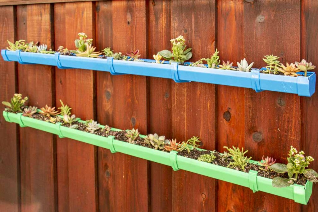 Two level rain gutter garden filled with succulents mounted on a fence.