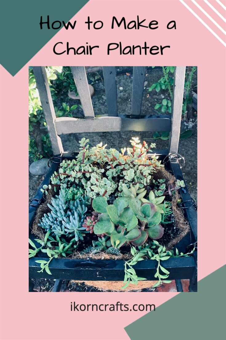 Garden chair made from an old chair with the seat replaced with a natural liner filled with a variety of succulents.