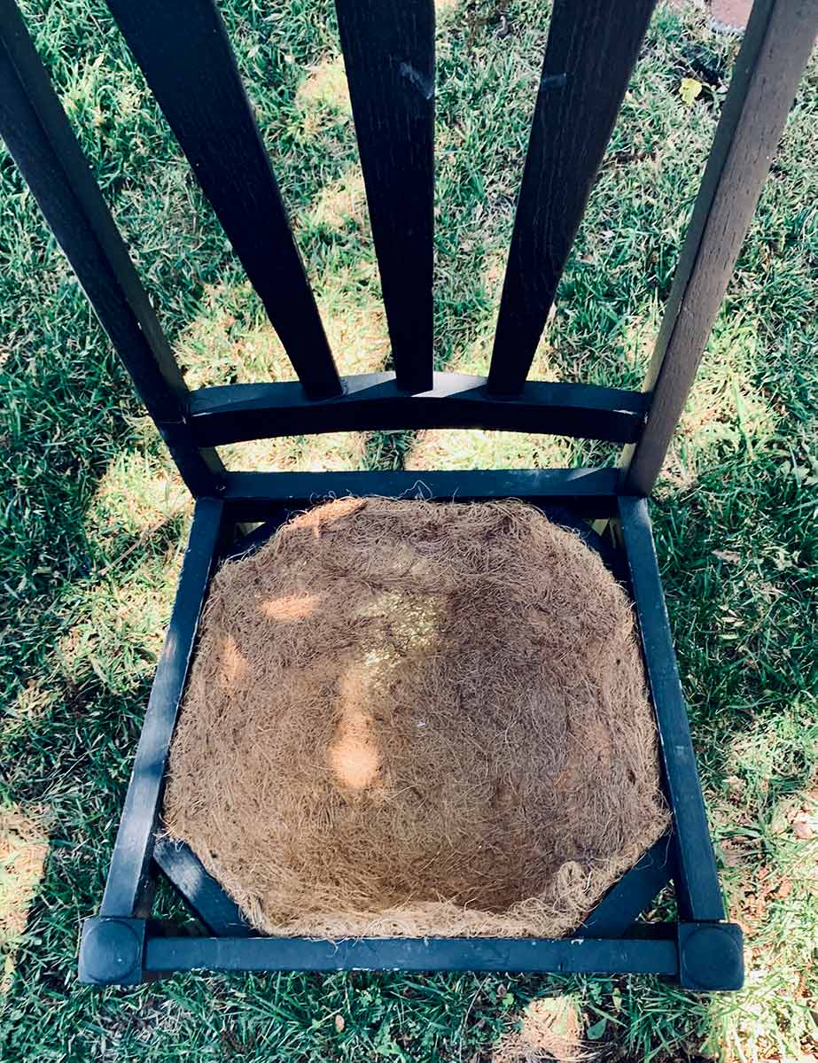 Hanging basket natural fiber liner attached to the seat area of an old chair.