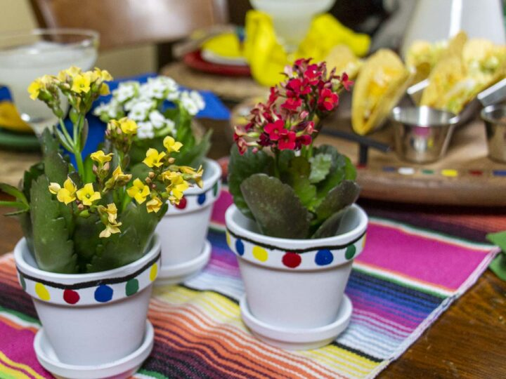 DIY Centerpieces made from terra cotta pots spray painted white and decorated with painted pom poms to match the decor
